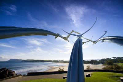 Leap of Faith, Four Swans Sculpture at Ballycastle-Chris Hill-Photographic Print