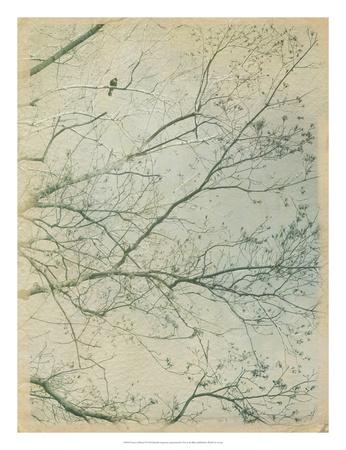 https://imgc.artprintimages.com/img/print/leave-it-behind-i_u-l-f8u8y80.jpg?p=0
