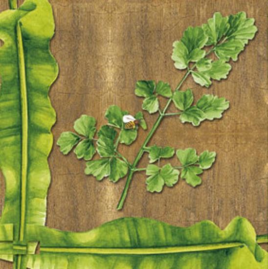 Leaves I--Art Print
