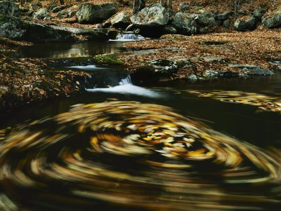 Leaves in whirlpool of Tye River near Blue Ridge Parkway, Appalachian Mountains, Virginia, USA-Charles Gurche-Photographic Print