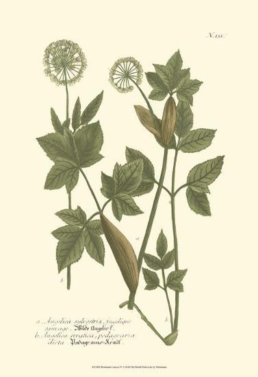 Leaves IV-Johann Wilhelm Weinmann-Art Print