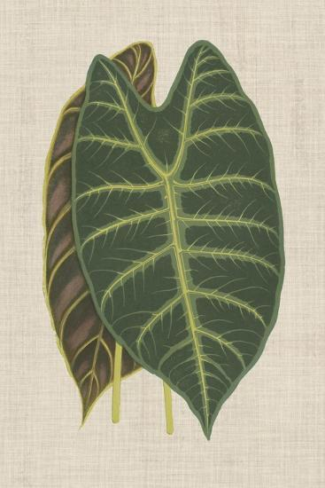 Leaves on Linen III-Unknown-Premium Giclee Print