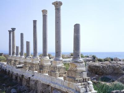 Lebanon, Tyre, Colonnade of Palaestra, Gymnasium Exercise Area--Giclee Print