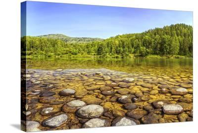 Lebed River at Turochak Russia--Stretched Canvas Print