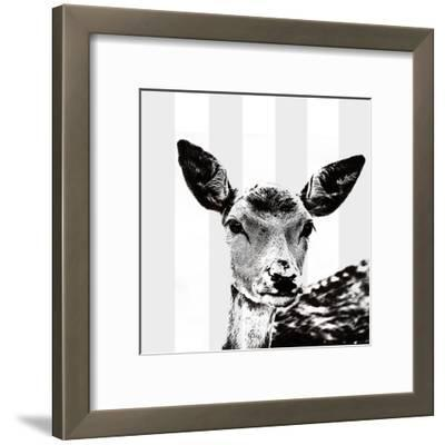 Deer Black And White - Square