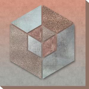 Pastel Salmon Hexagon by Lebens Art
