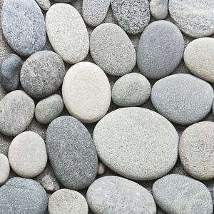 Pebble - Square by Lebens Art