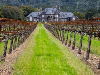Ledson Winery, Sonoma Valley, California, USA-Julie Eggers-Photographic Print
