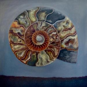 Ammonite, by Lee Campbell