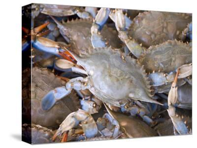 Blue Crabs, Maine Avenue Fish Market, Washington DC, USA, District of Columbia