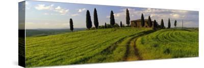 Farmhouse and Cypress Trees Near Pienza, Tuscany, Italy, Europe