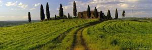 Farmhouse and Cypress Trees Near Pienza, Tuscany, Italy, Europe by Lee Frost