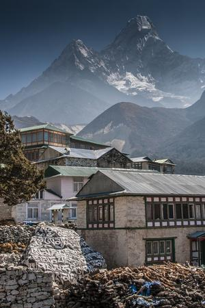 Teahouses with Mt. Ama Dablam in background.