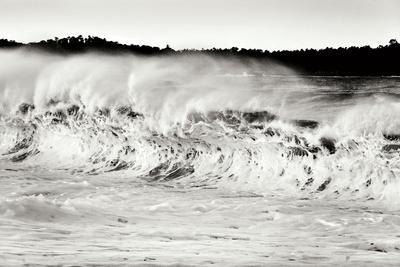 Carmel Waves II BW