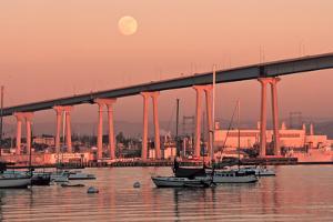 Moon & Bridge by Lee Peterson