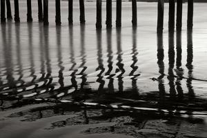 Pier Pilings 14 by Lee Peterson