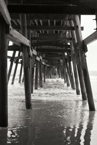 Pier Pilings 18 by Lee Peterson