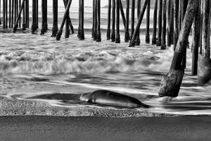 San Simeon Pier BW by Lee Peterson