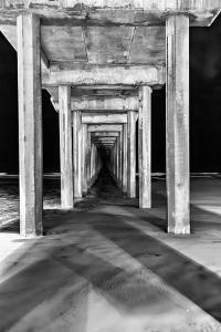 Under Scripps Pier by Lee Peterson