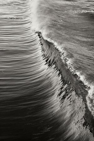 Wave 4 by Lee Peterson
