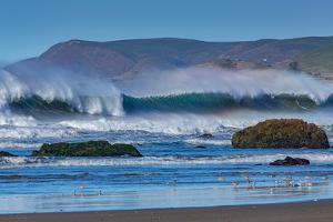 Waves in Cayucos II by Lee Peterson