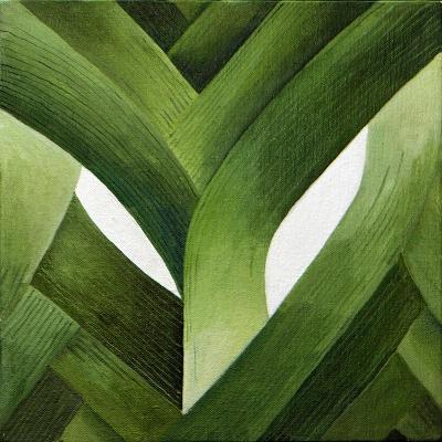 Leeks, 2013-Jennifer Abbott-Giclee Print