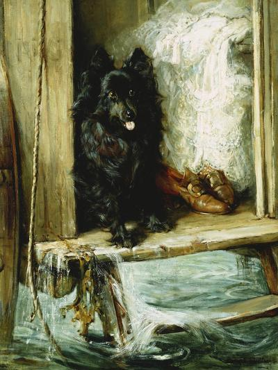 Left in Charge - a Black Pomerain on the Steps of a Bathing Machine-Philip Eustace Stretton-Giclee Print