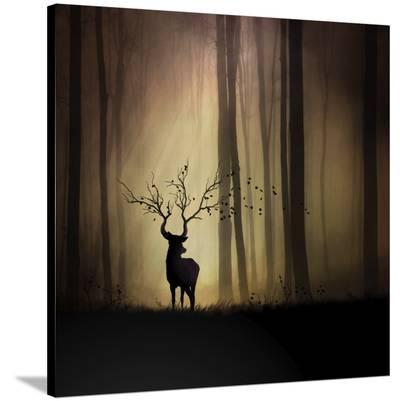 Legendes D'automne-Sebastien Del Grosso-Stretched Canvas Print