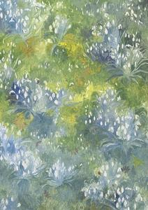 Snowdrops, 2014 by Leigh Glover