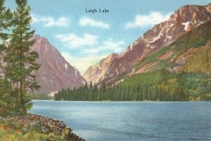 Leigh Lake, Grand Teton