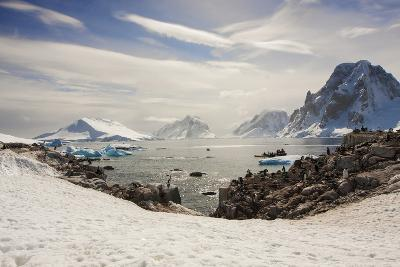 Lemaire Channel, Antarctica. Kayaking, Penguins, and Blue-Eyed Shags-Janet Muir-Photographic Print