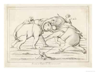Two Elephants Fighting with Men on Their Backs