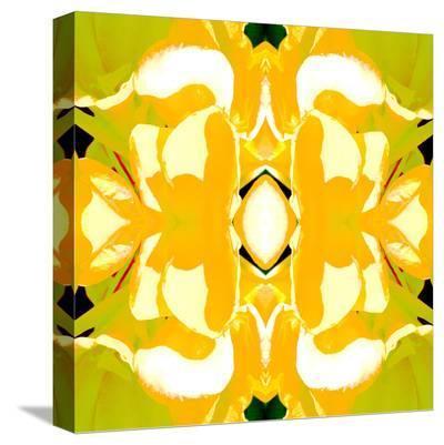 Lemon Canna2-Rose Anne Colavito-Stretched Canvas Print
