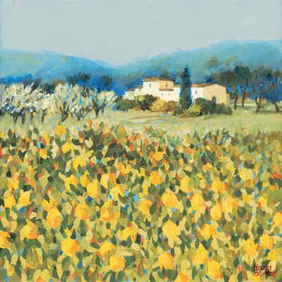 https://imgc.artprintimages.com/img/print/lemon-grove-tuscany_u-l-pxkwye0.jpg?p=0