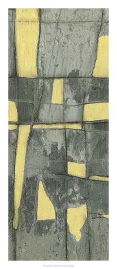 Lemon on Grey II-Jennifer Goldberger-Premium Giclee Print