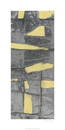 Lemon on Grey III-Jennifer Goldberger-Limited Edition
