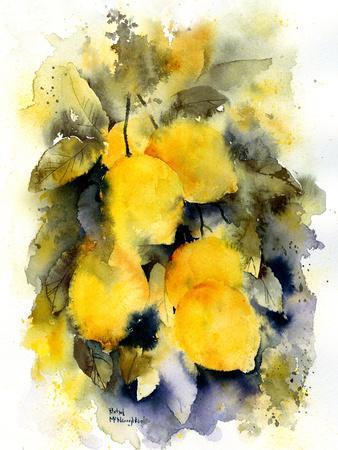https://imgc.artprintimages.com/img/print/lemon-tree_u-l-f9952m0.jpg?p=0