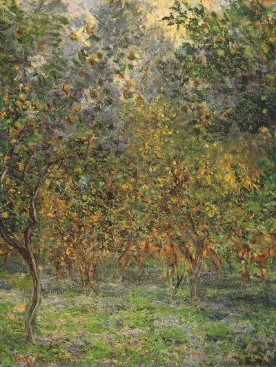 Lemon Trees, 1884-Claude Monet-Giclee Print