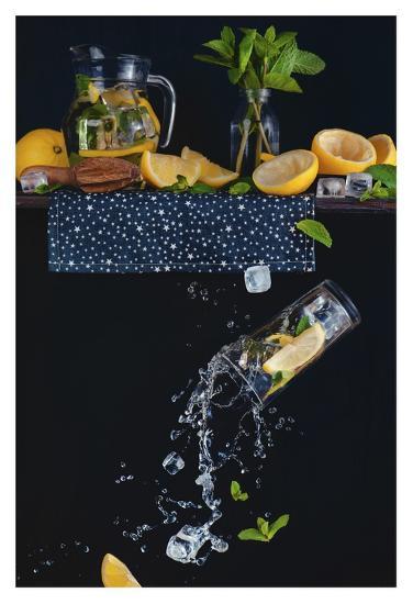 Lemonade From The Top Shelf-Dina Belenko-Giclee Print