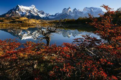 Lenga Beach In Peak Autumn Foliage Is Reflected In A Laguna In Torres Del Paine NP, Chile-Jay Goodrich-Photographic Print