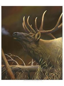 Elk Portrait I by Leo Stans
