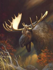 Moose Portrait by Leo Stans