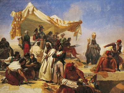 Egypt Expedition under Bonaparte's Command
