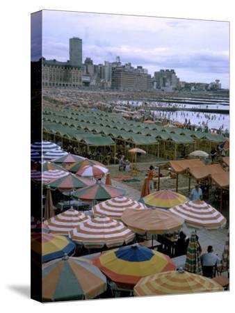 Sea of Umbrellas and Canvas Nearly Covers Mar Del Plata Beach