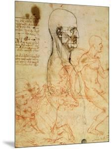 Anatomical Studies, circa 1500-07 by Leonardo da Vinci
