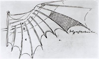 Detail of a Mechanical Wing, 1488-89