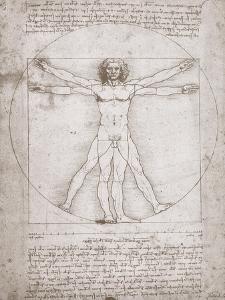 Proportions of the Human Figure According to Vitruvius by Leonardo da Vinci