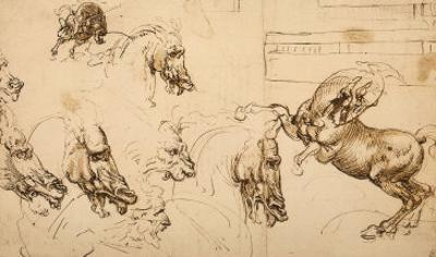 Rearing Horse and Study of Horse, Lion and Human Heads, Drawing, Royal Library, Windsor