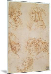 Seven Studies of Grotesque Faces by Leonardo da Vinci