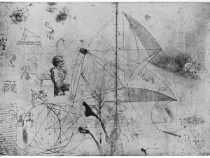 Sheet of Studies, Late 15th or Early 16th Century by Leonardo da Vinci